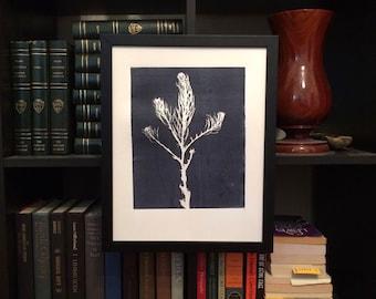 Desert botanicals, desert plants, gray botanicals, botanical prints, gray wall art, charcoal gray, art gift ideas, art for her, art for him
