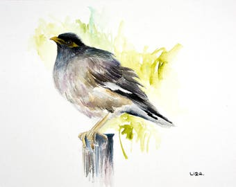 Common Myna Original Watercolor Painting High Quality Giclée Print canvas , home decor office nursery animal art Handmade gift art PRINT