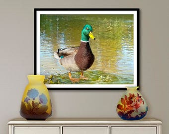 Digital painting, Mallard, digital download and print on canvas or paper art