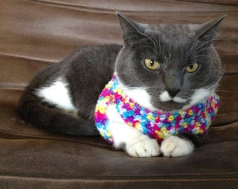 Custom Crochet Cat Sweater- 'Schroedinger' Design
