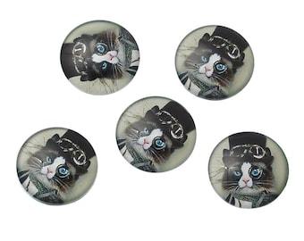 5 round embellishment resin cabochons 25mm cat black