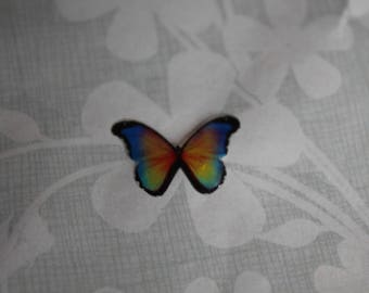 transparent Butterfly multicolored 1.9 x 1.4 cm, no. 67