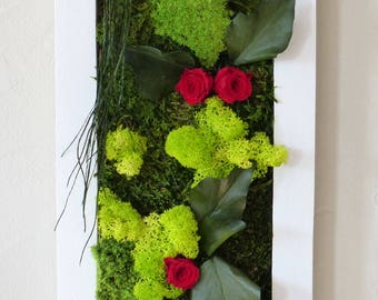 Plant picture(Board) rectangular 57 cm x 20 cm plants on walls, stabilized, plants made entirely by hand in one piece