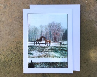 Horses Playing Notecard - Blank Inside - Ships free!
