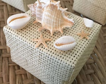 Beach Themed Wedding Favors with Real Seashells and starfish