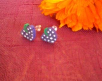 Kids fruit shape Stud Earrings