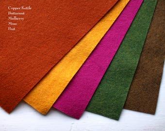 Wool Felt Pack - Autumn Colors