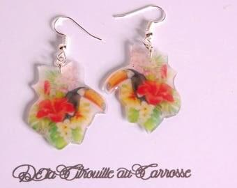 Toucan exotic flowers earrings