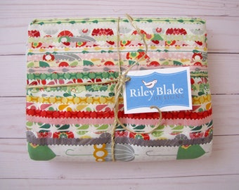 Rainy Days and Monday Fat Quarter Bundle (21) by Melimba & Beccabury for Riley Blake Designs