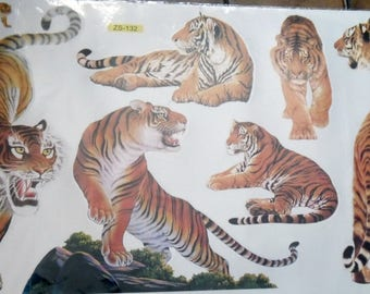 WALL DECALS * TIGER *.