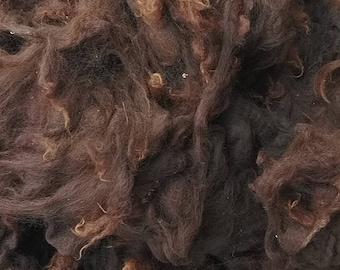 Medium brown huacaya alpaca fleece for spinning (raw, unwashed)