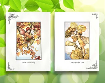 Hazel-Nut and Hawthorn Flower Fairy Print from vintage book. Woodland Fairies Nursery themed gift for girl. Illustration for framing