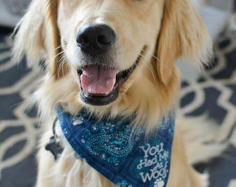 You had me at woof reversible dog bandana