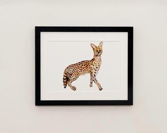 Serval Cat Illustration Print