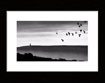 birds above Stoodley Pike, Todmorden (framed)