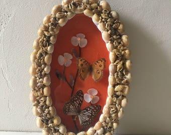 Cadre Papillons Vintage
