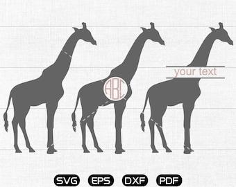 Giraffe Svg, Giraffe Clipart, Monogram Frame cricut, cameo, silhouette cut files commercial & personal use