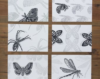 Black and White Insect Postcard Set of 6