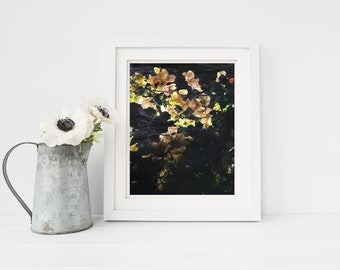 Yellow, Grey and Black Floral Art Print
