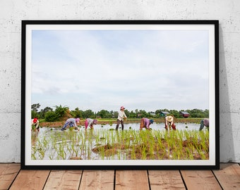 Cambodia Rice Farmers Photo // Travel Photography Wall Art, Rural Village Life Print, Asia Rice Fields, Cambodian Landscape Home Decor