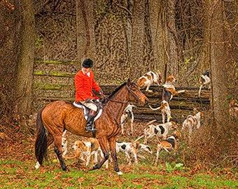 Horse and hound decor, art