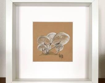 Pencil drawing, mushrooms