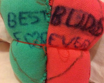 The best buds forever pillow (not including the cat