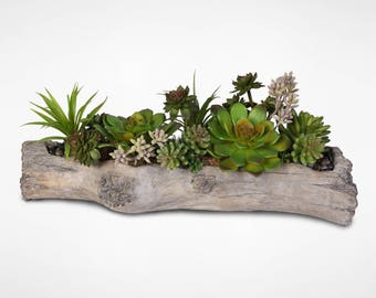 Artificial Succulents with Natural Rocks in a Cement Log