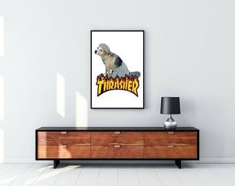 Thrasher Dog