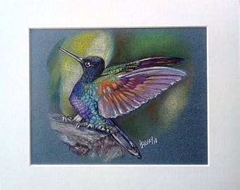 Hummingbird pastel painting, 7 x 9 with mount 10 x 12, original painting, free postage,