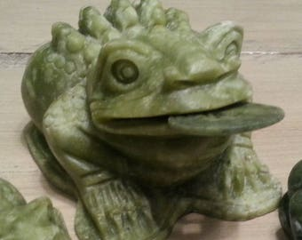 Feng Shui Money Frog Coin 3 Legged Frog for Luck and Prosperity