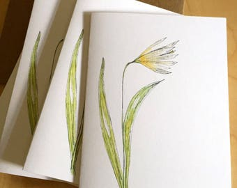 Watercolor Floral Blank Note Cards - White Trout Lily Flower Cards - Wildflower - Botanical Note Cards - Set of 6