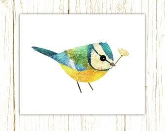 Blue Tit Print -- bird art -- colorful bird art by stephanie fizer coleman illustration
