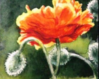 ACEO Print of Watercolor Painting - Orange Poppy - Art Card - Artist Trading Card - ATC - Floral Painting - Reproduction