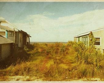 Reed's Beach #1