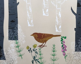 Song Thrush - original print