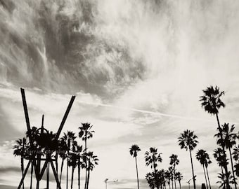 SALE photography, Venice Beach photo, black and white photograph, palm trees, LA, Los Angeles, California beach, boys room decor, gray, for