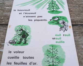 """Vintage 1960/60s French educational chart school poster recto/verso 15.7 """" x 11.8 """""""