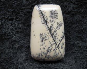 Dendritic limestone freeform trapezoid cabochon