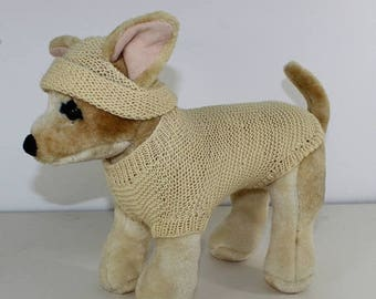 40% OFF SALE madmonkeyknits - Small Dog  4 Ply Coat and Beanie Hat knitting pattern pdf download - Instant Digital File pdf knitting pattern
