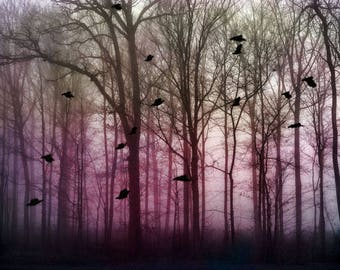 "Surreal landscape photography pink trees birds dreamy fantasy dark - ""Magenta forest"" 8 x 10"