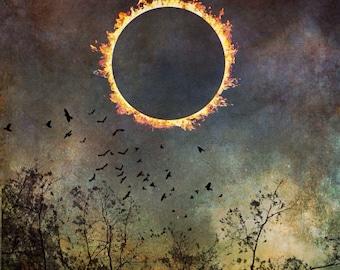 solar eclipse dramatic sky photo, fine art decor bird flying photograph, nature landscape surreal dreamy home wall art spiritual sun moon