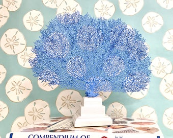 Beach Decor - Natural Painted Sea Fan on Pedestal - coral, coastal, nautical, sealife