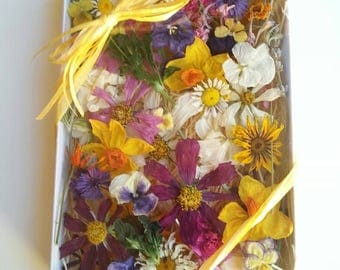 Wedding Confetti, Dry Flowers, Centerpiece, Wedding Confetti,  Table Decor, Flower Girl, Basket, Biodegradable, Decorations, 300 Dry Flowers