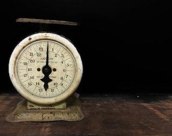 Vintage Kitchen Scale, Antique Postal Scale, American Steel Product Co, General Store Scale, White Rustic Decor, Kitchen Primitive, Cream