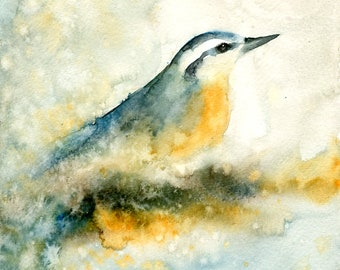 Nuthatch Painting, Original Watercolor painting, Bird painting, Bird Art  8x10inch