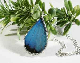 Real Blue Butterfly Necklace, Morpho Patroclus Pendant, Teardrop Butterfly Wing, Sterling Silver Chain