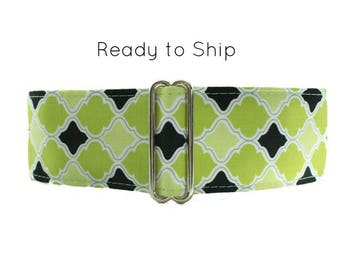Ready to Ship Martingale Collar, 2 Inch Martingale Collar Greyhound Martingale Collar, Lime Dog Collar, Dog Collars Canada, Side Release