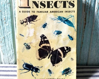 Vintage Childrens Golden Book Nature Guide INSECTS 1956, Guide to Familiar American Insects, Vintage Ephemera