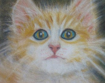 15 % off Shabby Chic Cat Lovers an  ORIGINAL PASTEL DRAWING  of a  Sweet Fluffy Tiger Kitty in a Basket  With Beautiful Eyes Framed with Gla